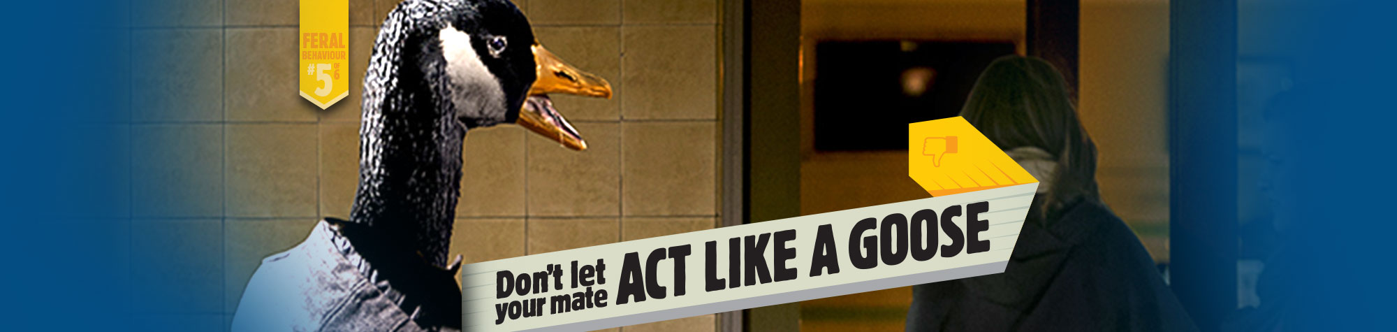Don't let your mate act like a goose